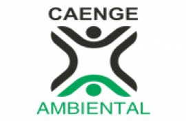 Caenge Ambiental S/A